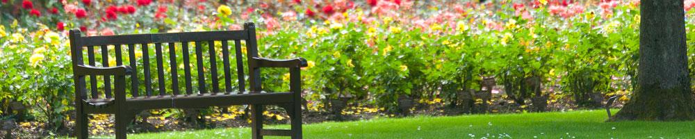 Header - Garden Bench